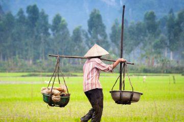 Voyage solidaire en Asie