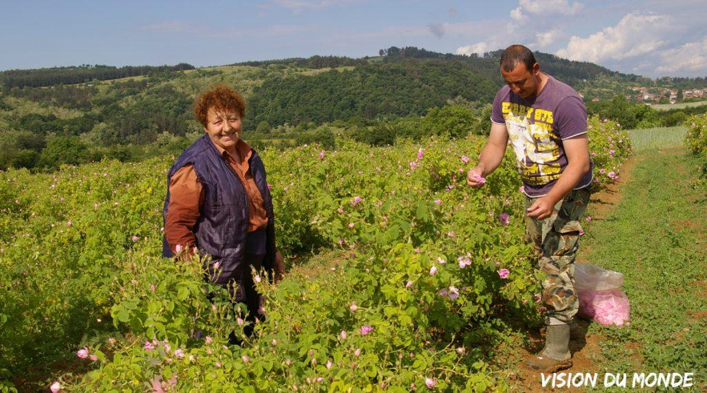 Fête de la rose en Bulgarie