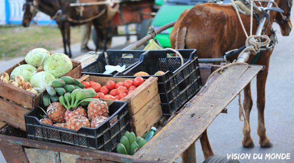 Fruits et légumes à Cuba