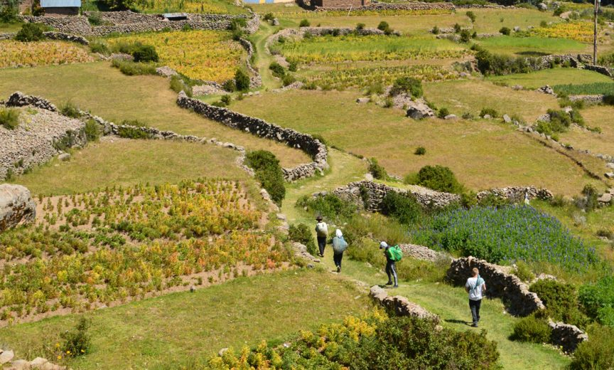 Voyage scolaire au Pérou