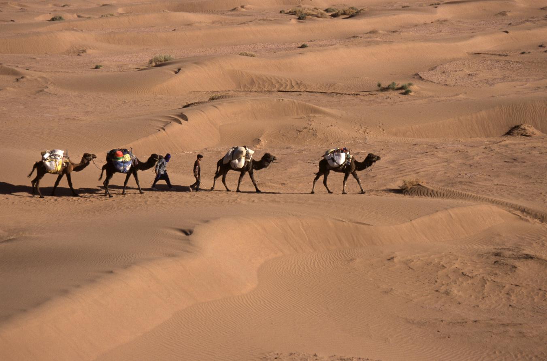 Vallée du Drâa dans le grand sud marocain