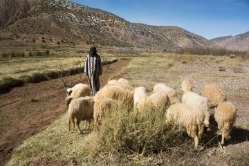Maroc, voyage solidaire